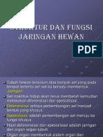 Bab 3 Struktur Dan Fungsi Jaringan Hewan-1