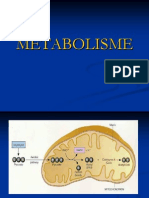 Bab 02 Metabolisme-2