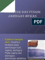 Bab 3 Struktur Dan Fungsi Jaringan Hewan-2