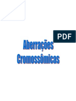 Aberracoes-cromossomicas