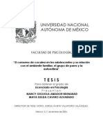 tesis_nancy_maya.pdf