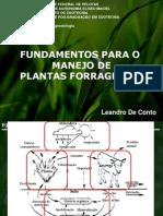 Fundamentos Para o Manejo de Plantas Forrageiras