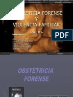 Obstetricia Forense y Violencia Familiar