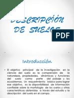 DESCRIPCÍÓN DE  SUELOS.pptx
