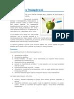 Los Alimentos Transgénicos.pdf