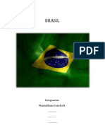 Pauta TIG Ej Brasil