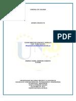 Aporte_Proyecto.docx