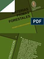 Materias Primas Forestales - Presentar