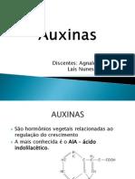 Auxinas POWER POINT .pdf