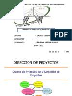 Procesos de Direccion de Preyectos