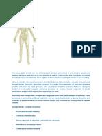 Material Internet Kinetoterapie