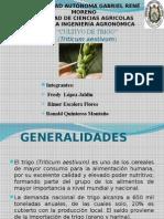137822288-Cultivo-de-Trigo[1]