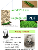 Mendels Law of Segregation