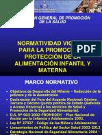 PONENCIA_4_NORMAS_DE_PROTECCION[1]