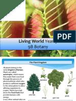 biology yr 9 plants 2013