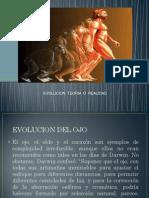 PRESENTACION DE EVOLUCION DEL OJO.pptx