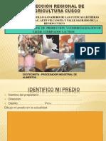 Costo de Produccion Canchis- Marangani