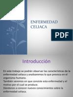 Enfermedad celiaca2