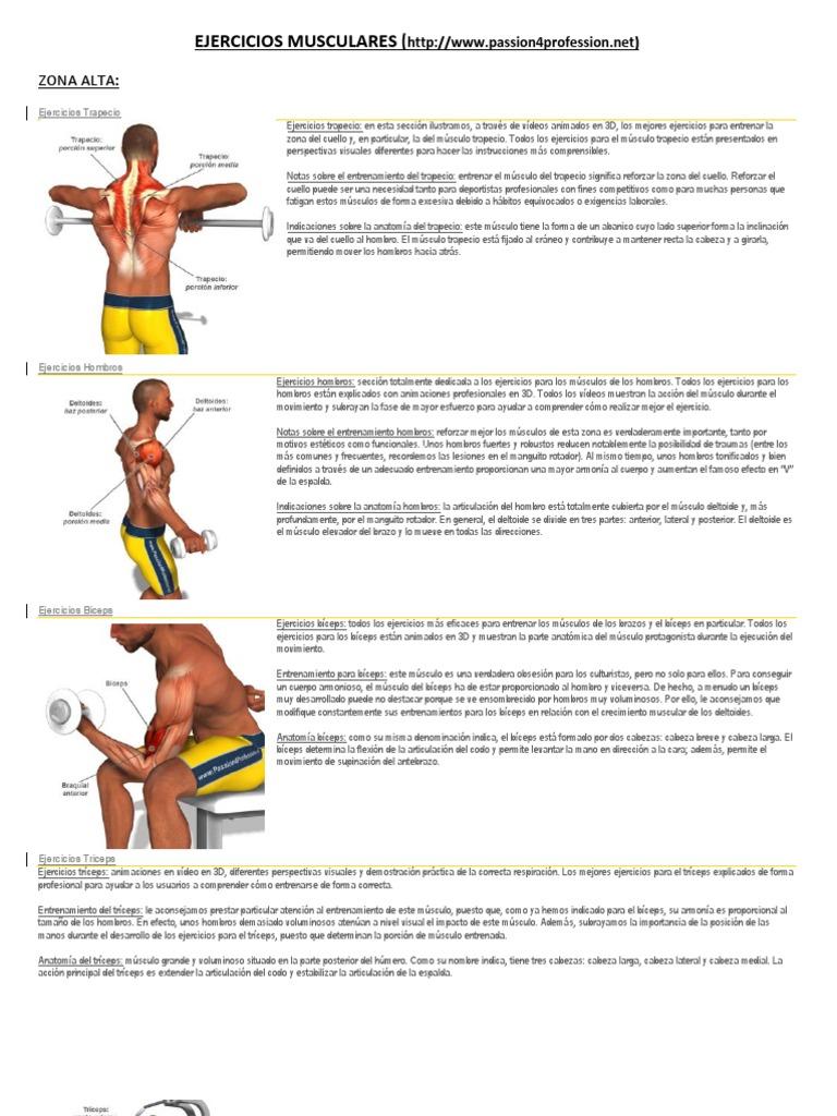 EJERCICIOS MUSCULARES.pdf