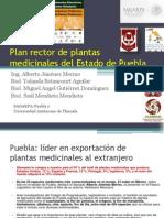 Plan Rector Plantas Medicinales Estado Puebla