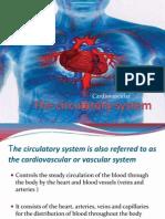 2011.4.1Cardiovascular System V2