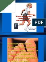 Anatomia y Biomecánica del Complejo Tobillo-Pie