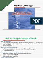 Lec # 2. Animal Biotechnology