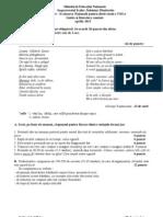 Simulare Evaluare Nationala Romana DB