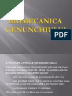 Genunchi