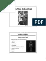 Aula Sistema Endocrino Visao Geral 4