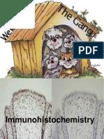Immuno His to Chemistry