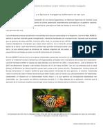 El-santuario-de-Monsanto-en-San-Luis.pdf