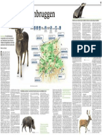 Dure  dierenbruggen. NRC Wetenschap Zaterdag 15-09-2012