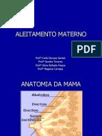 Aleitamento Materno PDF (2)