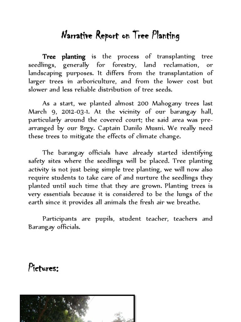 narrative report on tree planting