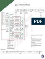 ld flow chart