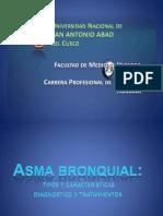 Asma bronquial - Fisiopatología, tipos y características