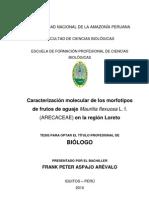 Tesis Caracterizacion Molecular de Morfotipos en Aguaje