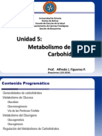 U 05 Metabolismo de Carbohidratos 2