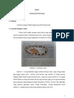 142990026-bed-side-teaching-limfoma-malignum.pdf