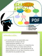 Organisadores graficos.ppt