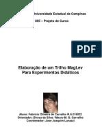 CARVALHO_Experimento Elaboração de um Trilho MagLev_UNICAMP