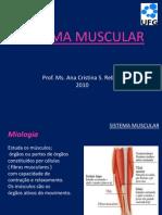 Aula Anatomia Sistema Muscular