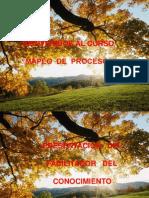 Curso de Mapeo de Procesos[1]