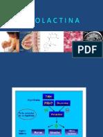 eje prolactina