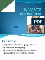 4._APARATO_RESPIRATORIO