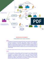 01 Estructura y Flujo Grama y Descripcion de Los Procedimientos
