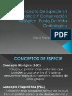 Concepto de especie en sistemática y conservación biológica