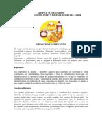ADITIVOS ALIMENTARIO -  INFORME COMPLETO.docx