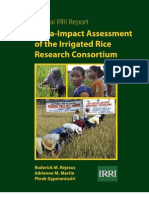 Meta-Impact Assessment of the Irrigated Rice Research Consortium